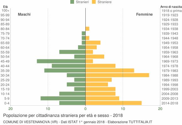 Grafico cittadini stranieri - Vestenanova 2018