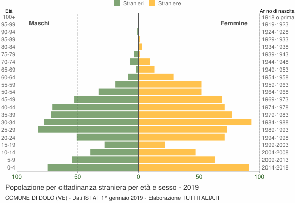 Grafico cittadini stranieri - Dolo 2019