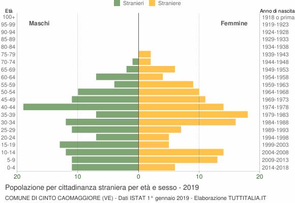 Grafico cittadini stranieri - Cinto Caomaggiore 2019