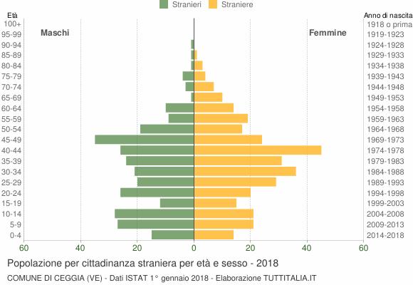 Grafico cittadini stranieri - Ceggia 2018