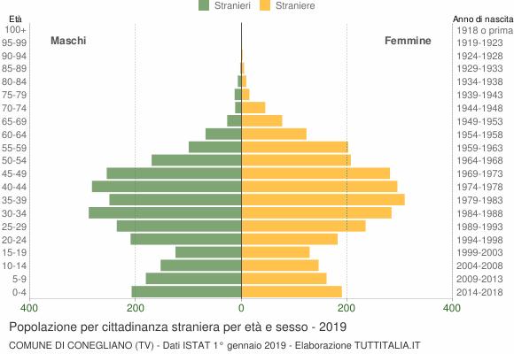 Grafico cittadini stranieri - Conegliano 2019