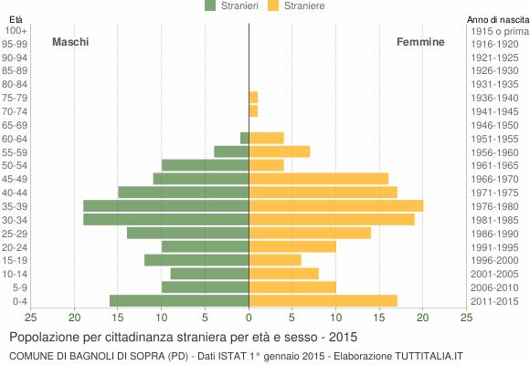 Grafico cittadini stranieri - Bagnoli di Sopra 2015
