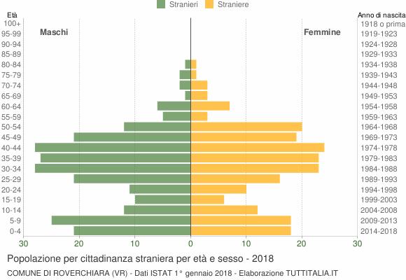 Grafico cittadini stranieri - Roverchiara 2018