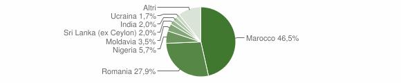 Grafico cittadinanza stranieri - Sanguinetto 2018