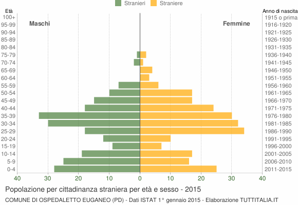 Grafico cittadini stranieri - Ospedaletto Euganeo 2015