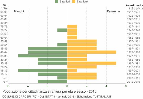 Grafico cittadini stranieri - Carceri 2016