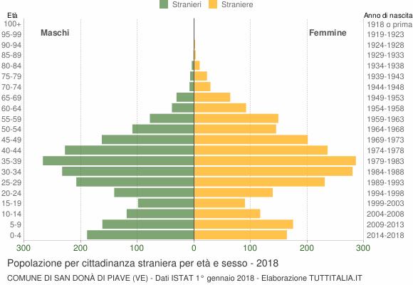 Grafico cittadini stranieri - San Donà di Piave 2018