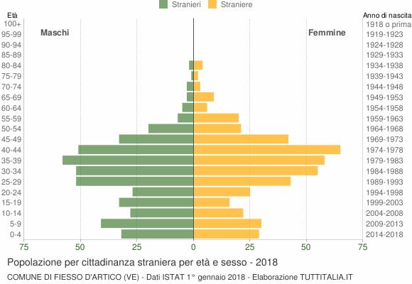 Grafico cittadini stranieri - Fiesso d'Artico 2018