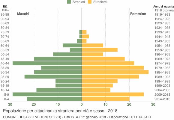 Grafico cittadini stranieri - Gazzo Veronese 2018