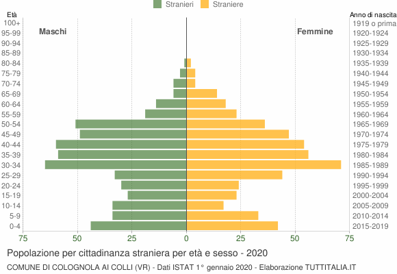 Grafico cittadini stranieri - Colognola ai Colli 2020