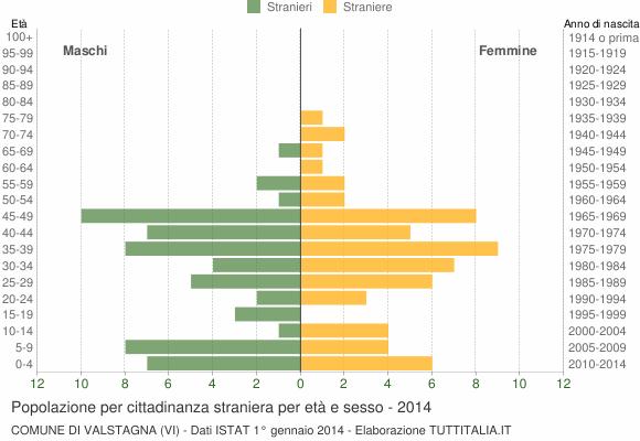 Grafico cittadini stranieri - Valstagna 2014