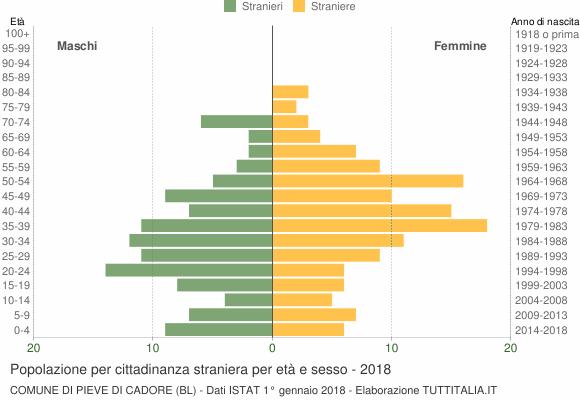 Grafico cittadini stranieri - Pieve di Cadore 2018