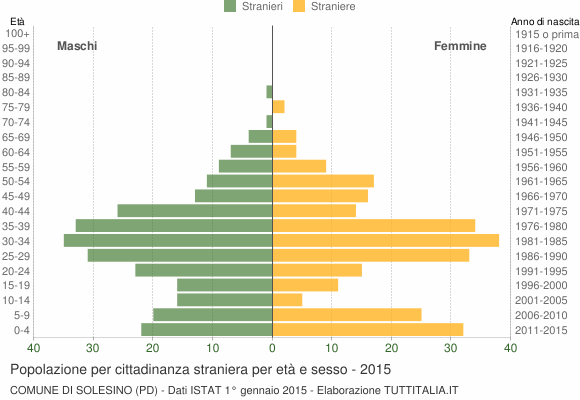 Grafico cittadini stranieri - Solesino 2015