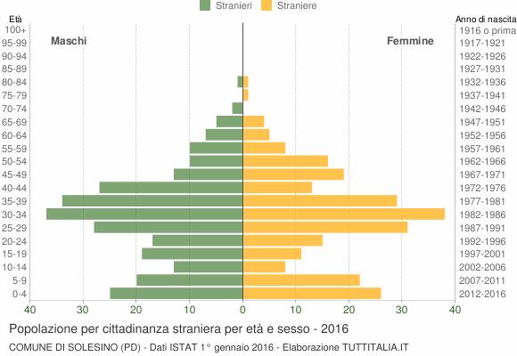 Grafico cittadini stranieri - Solesino 2016