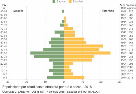 Grafico cittadini stranieri - Zanè 2018