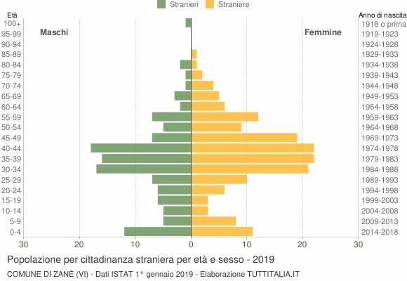 Grafico cittadini stranieri - Zanè 2019