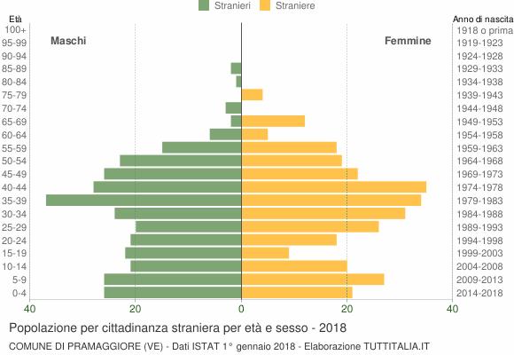 Grafico cittadini stranieri - Pramaggiore 2018