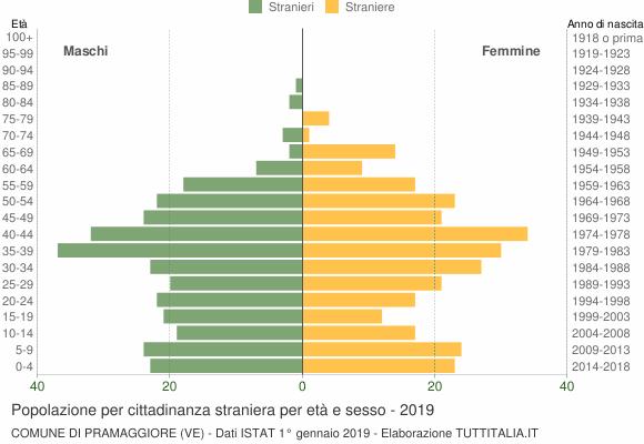 Grafico cittadini stranieri - Pramaggiore 2019