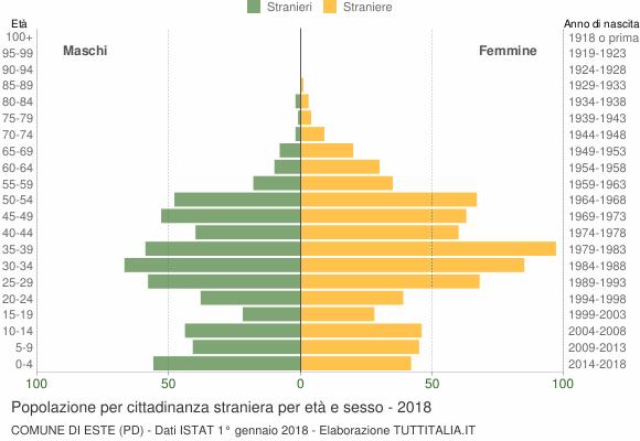 Grafico cittadini stranieri - Este 2018