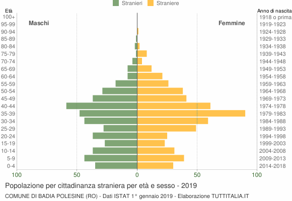 Grafico cittadini stranieri - Badia Polesine 2019