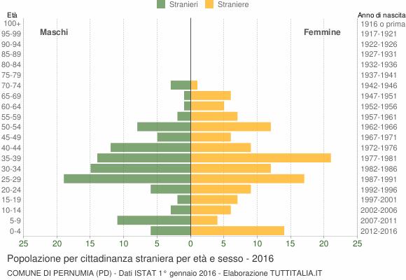 Grafico cittadini stranieri - Pernumia 2016