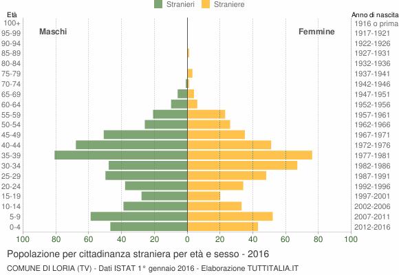 Grafico cittadini stranieri - Loria 2016
