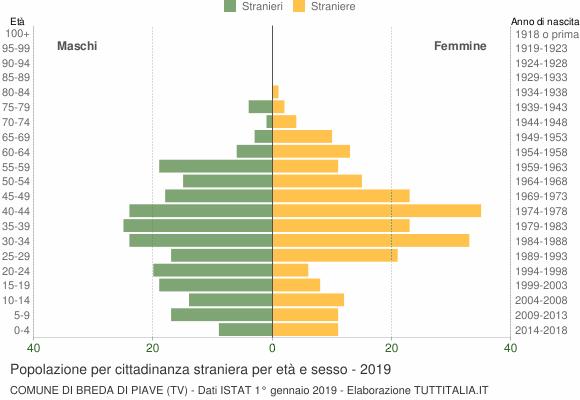 Grafico cittadini stranieri - Breda di Piave 2019