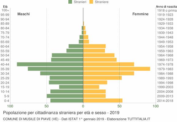 Grafico cittadini stranieri - Musile di Piave 2019